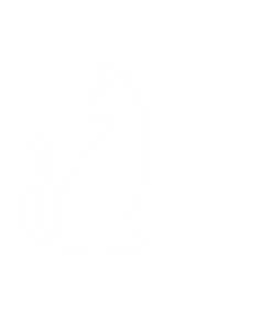 CAT Count Ask Think